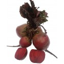 Rich in foliate, folic acid, soluble fibre. It is a valuable juice for pregnant women.