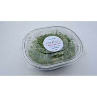 Broccoli Micro Leaf 60g