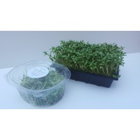 Fenugreek Micro Leaf 60g
