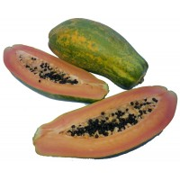 Ripe and ready to eat Papaya