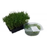 Pea Shoots Bowl 100g