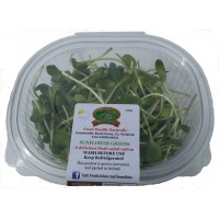 Sunflower Greens Bowl 100g