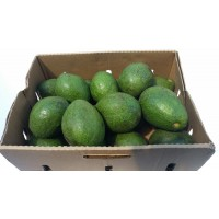 Avocado (Proper) Box 7-7.5 kg