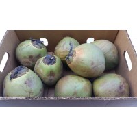 Real Coconut Water Box 8-9 pcs